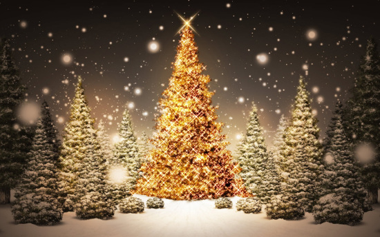 Lotería de navidad